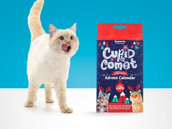 Adventskalender och julkalender katt